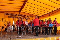 orkiestra_19_20140211_1106234952